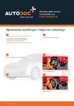Bilvedlikehold: gratis manual