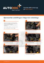 OPEL-reparasjonshåndbøker med illustrasjoner