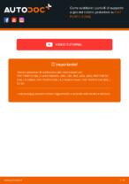 Scarica la guida PDF