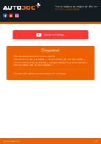Workshop manual for TOYOTA AYGO online