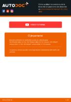 Manual de taller para VW PASSAT en línea