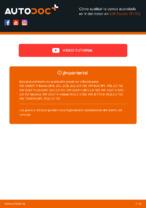 Descargar la guía PDF