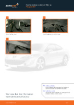 When to change Air conditioner filter on PEUGEOT 407 (6D_): pdf manual