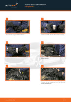 How to replace and adjust Fuel Filter diesel and gasoline: free pdf guide