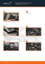 Free online instructions on how to renew Oil Filter on SKODA OCTAVIA Combi (1Z5)