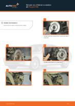 bak och fram Bromsskivor PEUGEOT 1007 | PDF instruktioner för utbyte