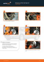 FAG 713 6109 80 för AUDI, SEAT, SKODA, VW | PDF instruktioner för utbyte
