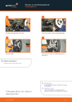 När byta Styrled yttre VW TRANSPORTER V Platform/Chassis (7JD, 7JE, 7JL, 7JY, 7JZ, 7FD): pdf handledning
