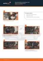 Mekanikerens anbefalinger om bytte av SKODA Octavia 1z5 1.6 TDI Luftfilter