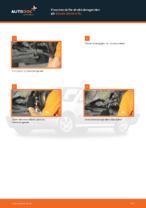 Skifte Lyspære tåkelyskaster: pdf instruksjoner for SKODA OCTAVIA