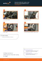 Hvordan bytte og justere Bærearm bak og foran: gratis pdf-guide