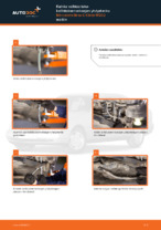 Automekaanikon suositukset MERCEDES-BENZ Mercedes W202 C 250 2.5 Turbo Diesel (202.128) -auton Polttoainesuodatin-osien vaihdosta