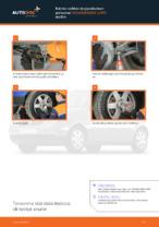 Milloin vaihtaa Pallonivel VW LUPO (6X1, 6E1): käsikirja pdf