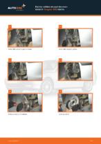 Vaiheittainen PDF-opas: kuinka vaihtaa PEUGEOT 406 Break (8E/F) -mallin Raitisilmasuodatin