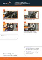 Instrukcja PDF dotycząca obsługi TRANSPORTER