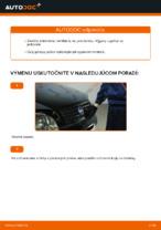 Príručka FIAT online