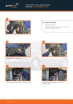 Jak vyměnit a regulovat Hlavni brzdovy valec : zdarma průvodce pdf