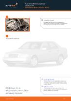 Εγχειρίδιο εργαστηρίου για Mercedes CL203