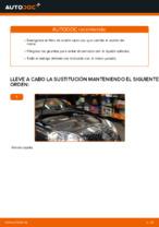 Instrucciones gratuitas en línea sobre cómo renovar Filtro de Aceite VW GOLF V (1K1)