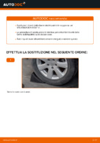 Le raccomandazioni dei meccanici delle auto sulla sostituzione di Testina dello Sterzo VW Golf 5 1.6