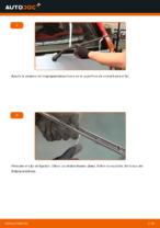 Cómo cambiar las escobillas traseras de limpiaparabrisas en FIAT PUNTO II (188)