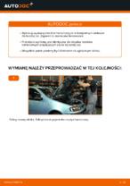 Wymiana Komplet klocków hamulcowych: pdf instrukcje do FIAT PUNTO