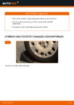 Ako vymeniť a regulovať Tlmiče perovania FIAT PUNTO: sprievodca pdf