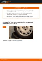 Stoßdämpfer wechseln FIAT PUNTO: Werkstatthandbuch