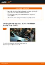 FIAT PUNTO (188) Regelsonde ersetzen - Tipps und Tricks