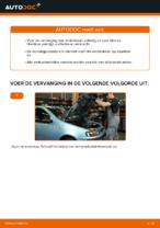Remblokset achter en vóór veranderen FIAT PUNTO: online gids