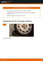 Verkstadshandbok FIAT ladda ner