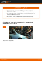 Reparatur- und Wartungsanleitung für FIAT PUNTO Convertible (176C)