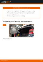 Hur man byter ut gasfjädern för bagageluckan på VOLKSWAGEN GOLF IV