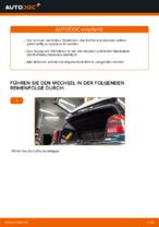 MAPCO 20961 für Golf IV Schrägheck (1J1) | PDF Handbuch zum Wechsel