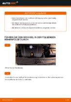 VW Schraubenfeder hinten links rechts wechseln - Online-Handbuch PDF
