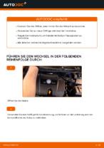 Tipps von Automechanikern zum Wechsel von VW Golf 4 1.6 Bremsscheiben