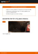 Byta Gasdämpare baklucka VW GOLF: online guide