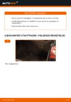 Hvordan erstatte gassfjærene til bagasjeluken på VOLKSWAGEN GOLF V