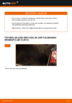 Wie der Austausch von Gasfedern des Kofferraumdeckels bei VOLKSWAGEN GOLF V-Autos funktioniert