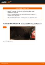 Hoe u gasveren voor het kofferbakdeksel van een VOLKSWAGEN GOLF V kunt vervangen