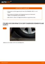 Wie Radlagersatz VW GOLF wechseln und einstellen: PDF-Leitfaden