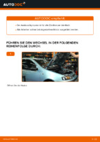 Werkstatthandbuch für Fiat Punto mk3 199 online