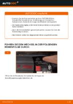 DIY-Leitfaden zum Wechsel von Scheibenbremsen beim FIAT 500 (312)