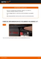 PDF Reparatie tutorial van automaterialen: FIAT 500 (312)