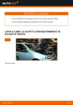 Manual de taller para Fiat Punto Evo en línea