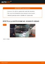 Come cambiare e regolare Filtro dell'olio : guida gratuita pdf