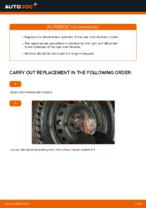 Brakes change & repair manual with illustrations