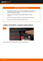 Výměna Kotouče FIAT 500: zdarma pdf
