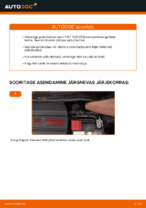 Autohooldus: tasuta kasutusjuhend