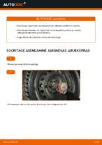 Kuidas vahetada ja reguleerida tagumine ja eesmine Pidurisilinder: tasuta pdf juhend
